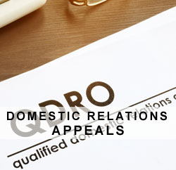 Domestic relation appeals